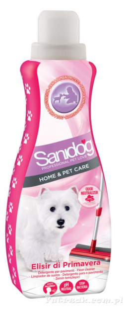 Sanidog Fruit Time Floor Cleaner/1l