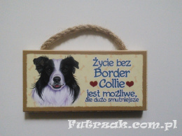 Tabliczka z magnesem-Border Collie